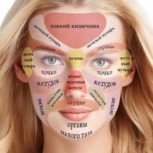 face biboting